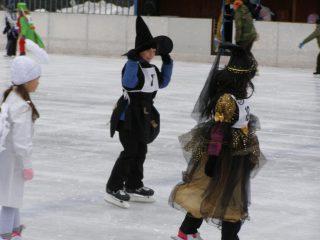 Karneval na ledě 2013
